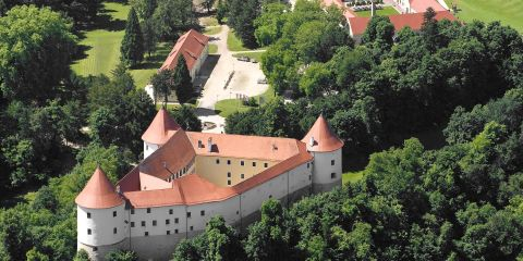 Castles of Posavje region